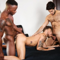 Diego Sans, Max Wilde, and Phoenix Fellington