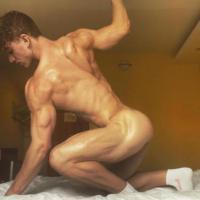 Felix Fox, Gay Porn
