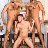 Justin Matthews, Jean Franko, Lucas Fox