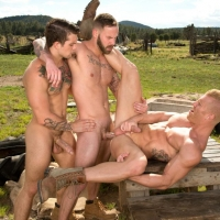 Chris Bines, Johnny V, Sebastian Kross Total Exposure